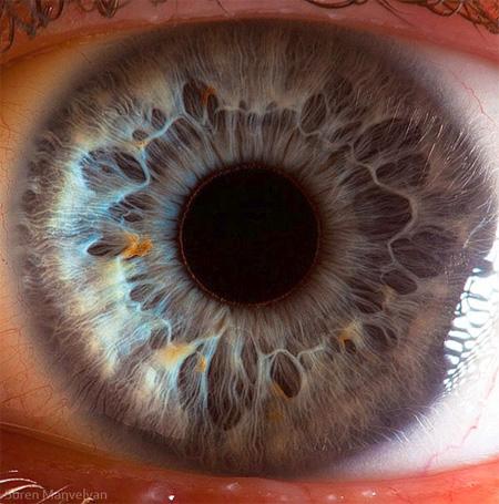 eye02 (450x455, 87Kb)