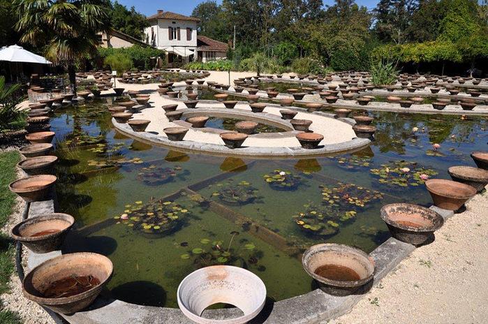 Есть в графском парке тихий пруд..... Там лилии цветут . .Ботанический сад Latour - Marliac. 36268