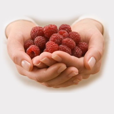 cupped_hands_fruit (400x400, 58Kb)