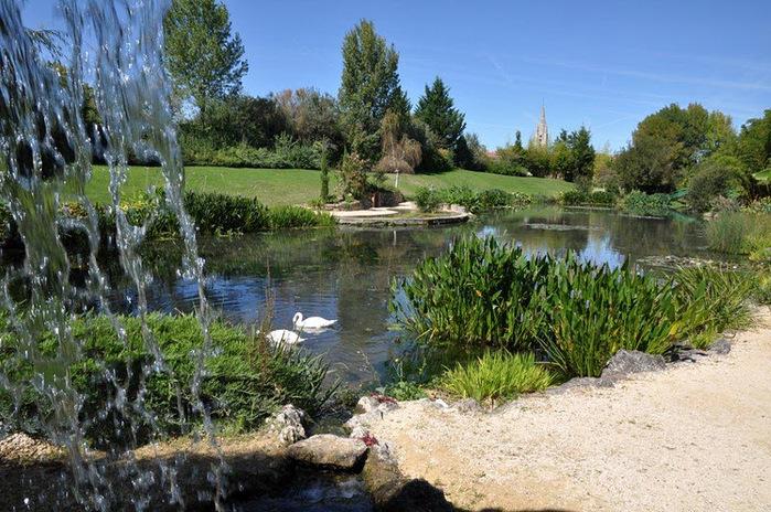 Есть в графском парке тихий пруд..... Там лилии цветут . .Ботанический сад Latour - Marliac. 54462