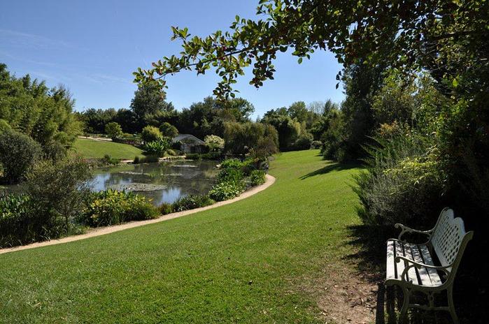 Есть в графском парке тихий пруд..... Там лилии цветут . .Ботанический сад Latour - Marliac. 59478