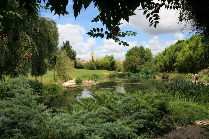 Есть в графском парке тихий пруд..... Там лилии цветут . .Ботанический сад Latour - Marliac. 61057