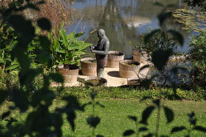 Есть в графском парке тихий пруд..... Там лилии цветут . .Ботанический сад Latour - Marliac. 21642