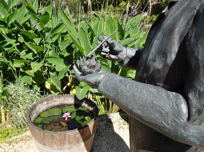 Есть в графском парке тихий пруд..... Там лилии цветут . .Ботанический сад Latour - Marliac. 98000