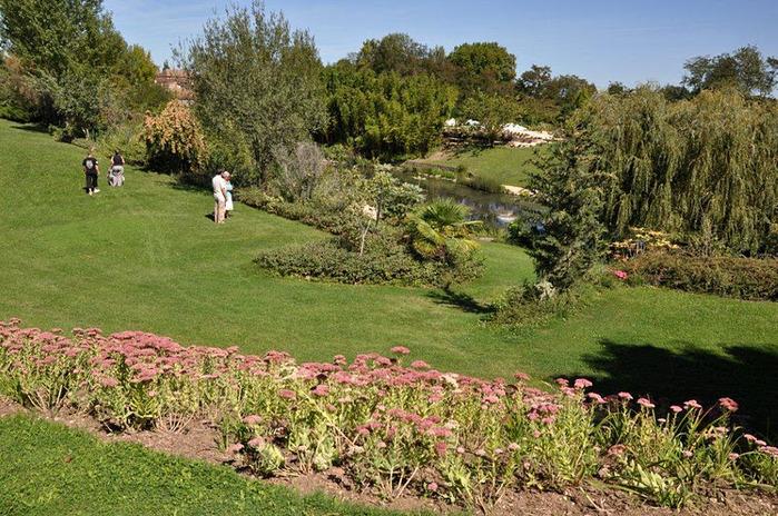 Есть в графском парке тихий пруд..... Там лилии цветут . .Ботанический сад Latour - Marliac. 15267