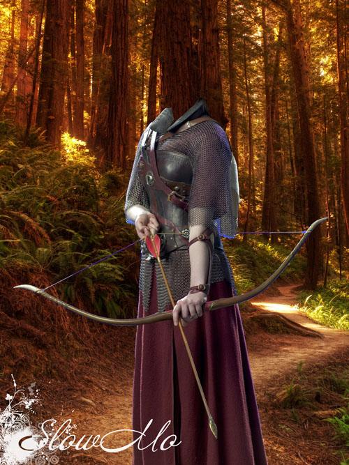 Шаблон для фотошоп - лучница в лесу/1320085796_Archer_in_wood_Cover (500x667, 154Kb)