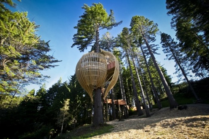 Ресторан на дереве Yellow Treehouse в Окленде