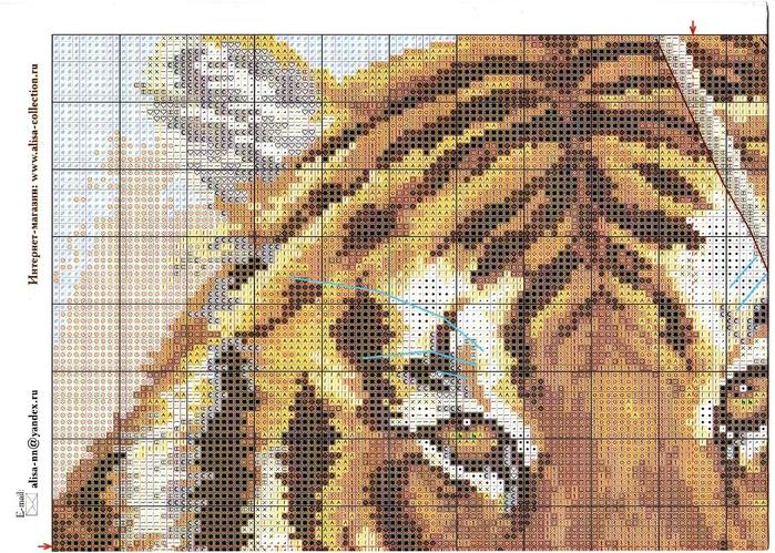 1-08 1 Тигр (700x499, 392Kb)