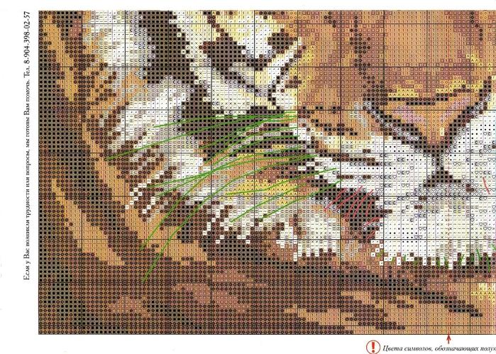 1-08 2 Тигр (700x499, 383Kb)
