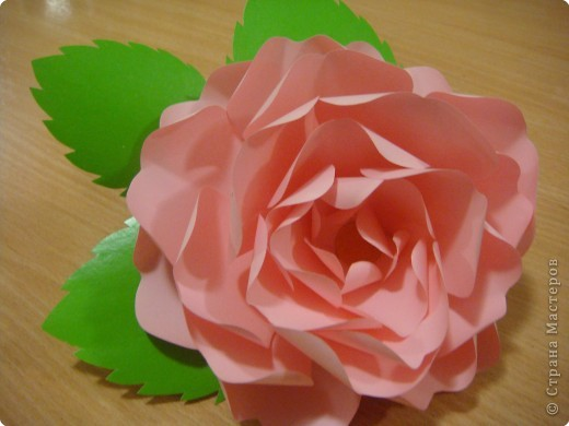 Поделки с детьми розы