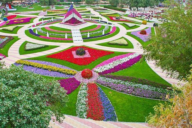 цветы 2 (640x428, 132Kb)