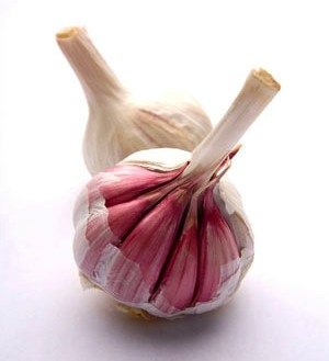 131006_garlic (300x329, 16Kb)
