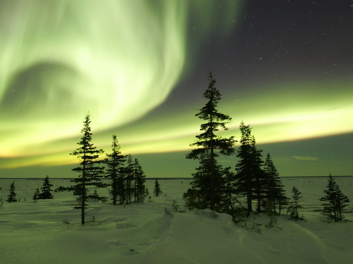 Image_0437.Manitoba.Churchill.The_Northern_Lights_in_Winter (700x525, 244Kb)
