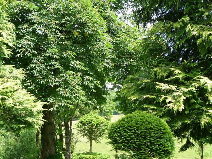 Сады поместья Эриньяк /Les Jardins du Manoir D'Eyrignac 68647