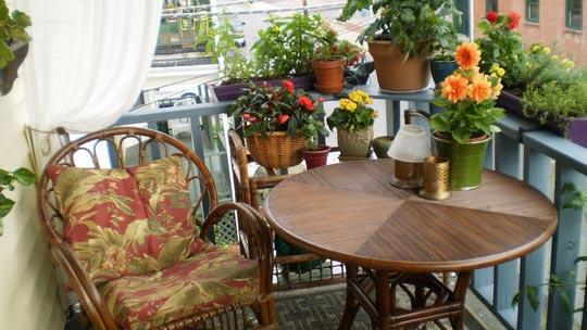 flowering-balcony-04.jpg Цветы на балконе 1 (540x304, 45Kb)