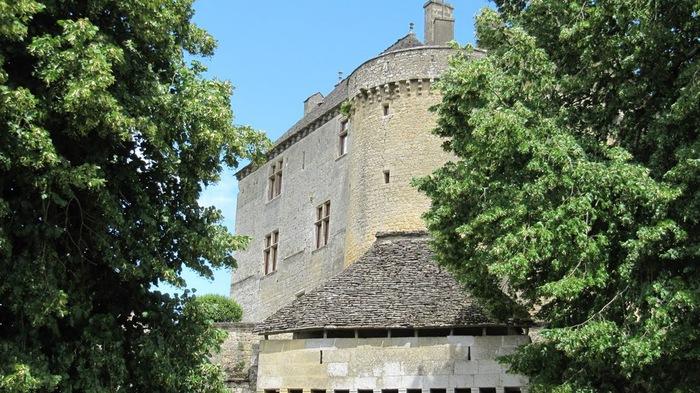Замок Фенелон (Fenelon) 78728