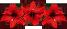 50262987_3412 (230x101, 39Kb)