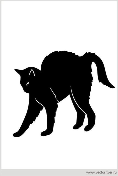cat_012 (472x700, 18Kb)