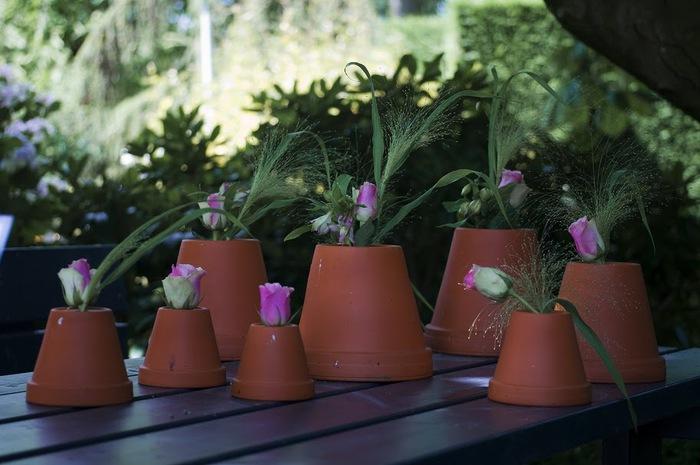 Волшебные сады Аппельтерна 64264