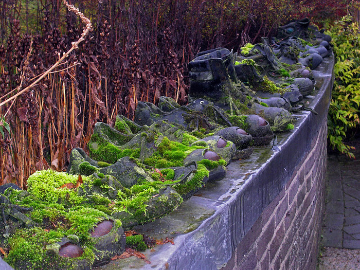 Волшебные сады Аппельтерна 52517