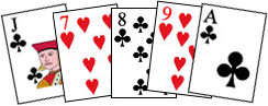 poker-hand-evaluator (244x97, 30Kb)
