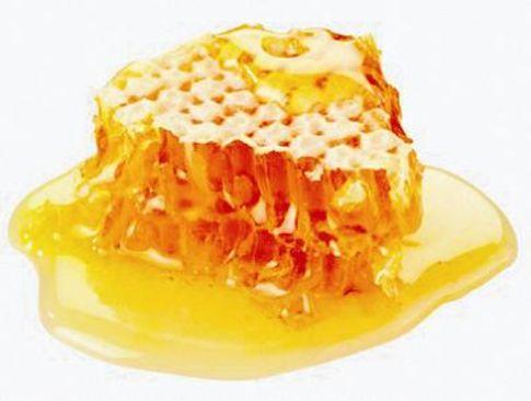 мед (485x366, 21Kb)