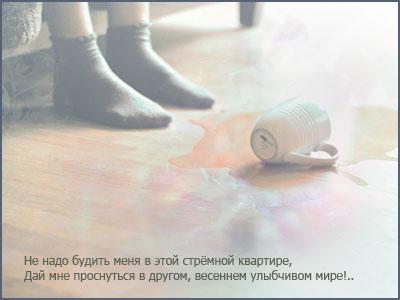 1856718_53438466_1262847706_10 (400x300, 34Kb)