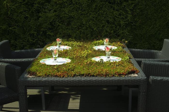 Волшебные сады Аппельтерна 65195