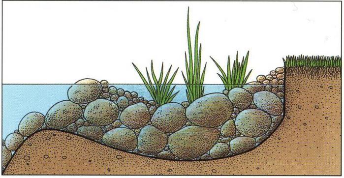 край водоема1 (700x362, 56Kb)