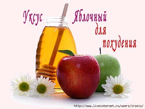 3720816_yabl_yksys6_1_ (502x380, 83Kb)