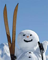как выбрать горные лыжи (201x251, 6Kb)