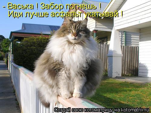 к11 (500x375, 46Kb)