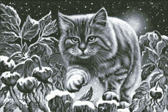 4267534_13944_2354_snowcat (700x467, 98Kb)