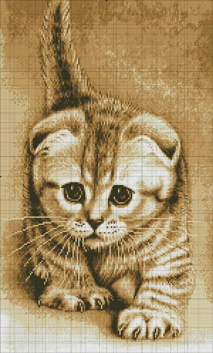 """свой цитатник или сообщество!  Схемы для вышивки  """"Котики """".  Прочитать целикомВ."""