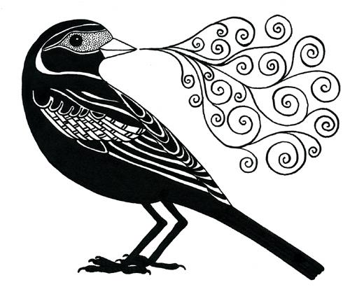 Blackbird (500x410, 142Kb)