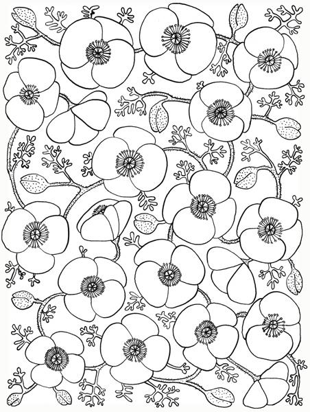 Poppy vine    (452x600, 207Kb)