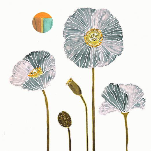 white_poppies (522x522, 167Kb)