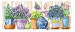Превью DMC-XC0265-Lavender_Pots (700x300, 102Kb)