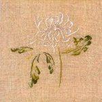 Превью DMC-XC1132B-Chrysanthemum (194x194, 10Kb)