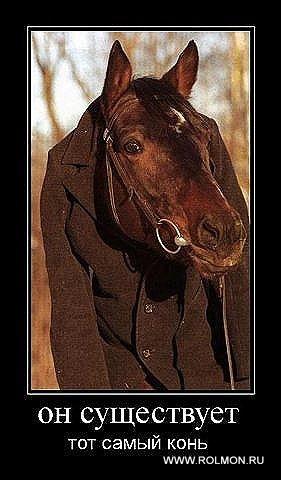 конь в пальто (281x480, 41Kb)