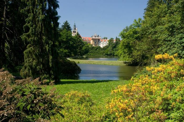 Ботанический сад в Пругонице 11489