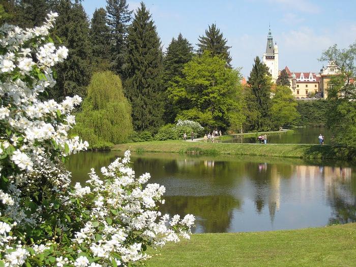 Ботанический сад в Пругонице 42320