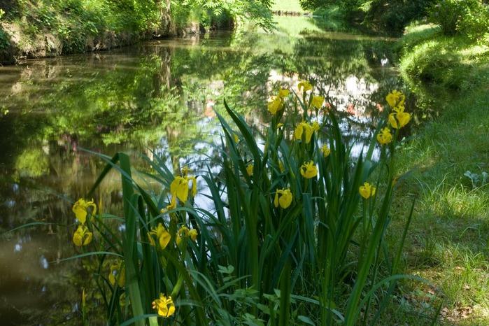 Ботанический сад в Пругонице 92768