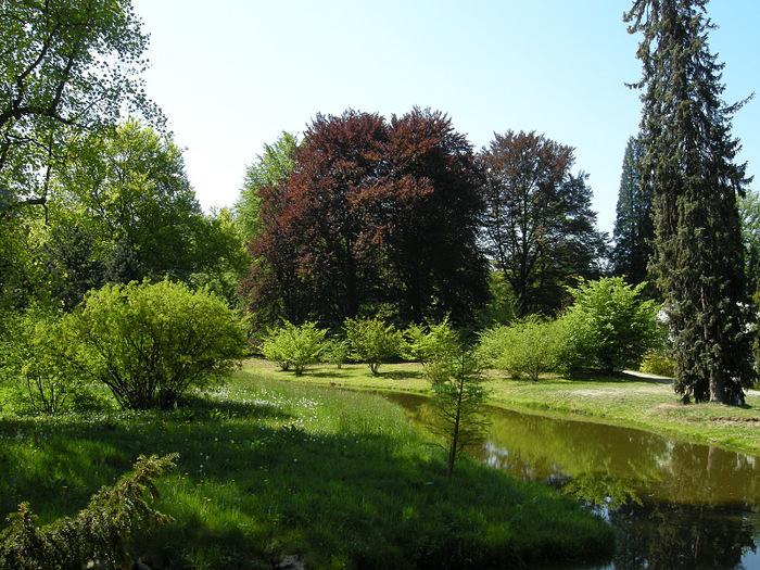 Ботанический сад в Пругонице 12437