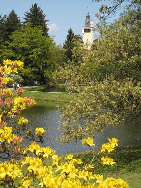 Ботанический сад в Пругонице 35823