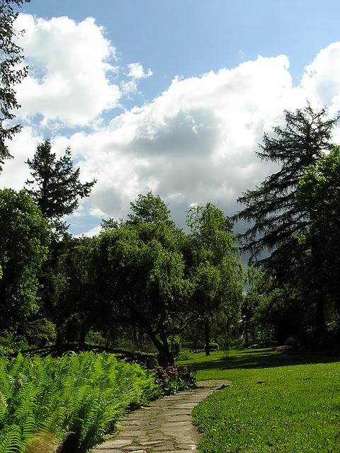Ботанический сад в Пругонице 57882