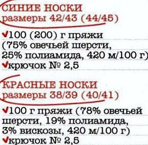 noski (290x284, 81Kb)