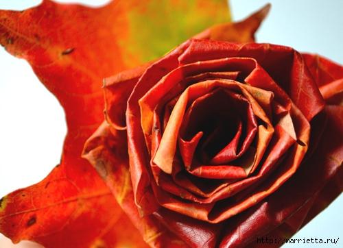 diy_leaf_rose_1 (500x362, 136Kb)