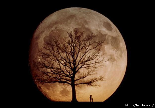 луна2 (626x438, 74Kb)