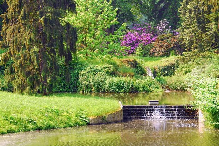 Ботанический сад в Пругонице 12527